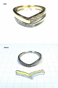 ringreform0108